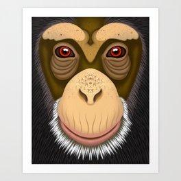 Old Chimpanzee Art Print