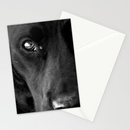 Loyalty  Black Lab  Stationery Cards