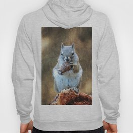 Squirrel with a Pine Cone Hoody