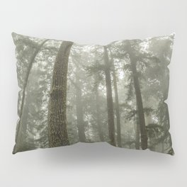 Memories of the Future - nature photography Pillow Sham