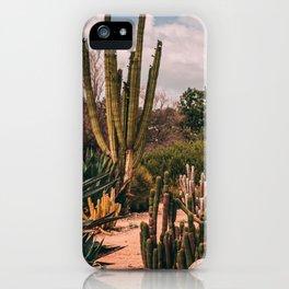 Cactus_0012 iPhone Case