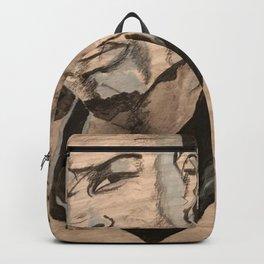 TI Backpack
