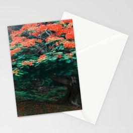 Tropical Flamboyant Tree USVI Stationery Cards