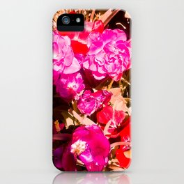 The beauty of the colors. iPhone Case