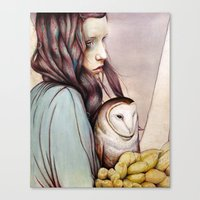 golden Canvas Prints featuring The Girl and the Owl by Michael Shapcott