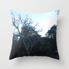 Dead Tree From Across The River Throw Pillow