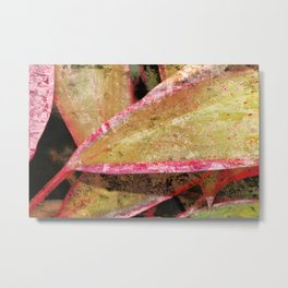 Tropical Textures Metal Print