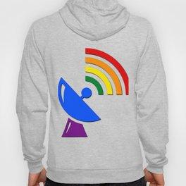 Rainbow Gaydar Gay Pride Flag Colors Hoody