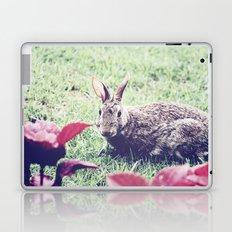 Curious Bun Laptop & iPad Skin