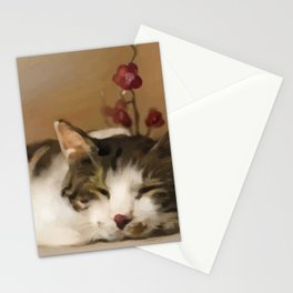 Cat Stationery Cards