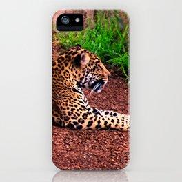 Classic Jag iPhone Case