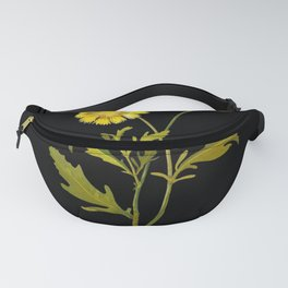 Centaurea Alpina Mary Delany Delicate Paper Flower Collage Black Background Floral Botanical Fanny Pack