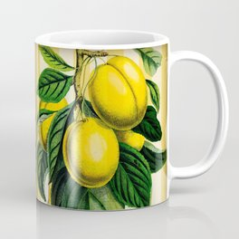 Plums with Stripes Coffee Mug