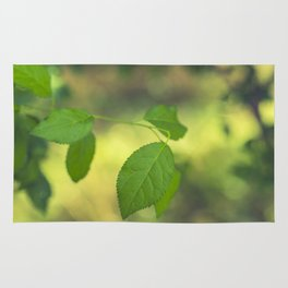 Green leaves and swirly bokeh effect Rug