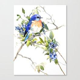 Bluebird and Blueberry Canvas Print