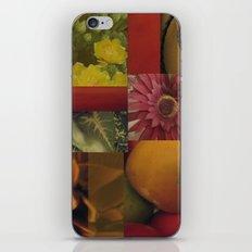Flowers & Fruit iPhone & iPod Skin