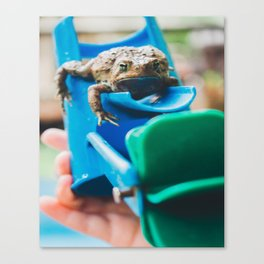 Adventures of Toad 3 Canvas Print