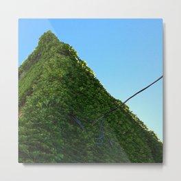 The Ivy Pyramid Metal Print