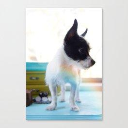 Puppy V2 Canvas Print