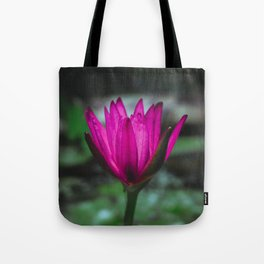 Pink water lily in the pond Tote Bag