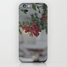 Rose de rouge iPhone 6s Slim Case
