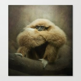 Study of a Gibbon - The Thinker Canvas Print