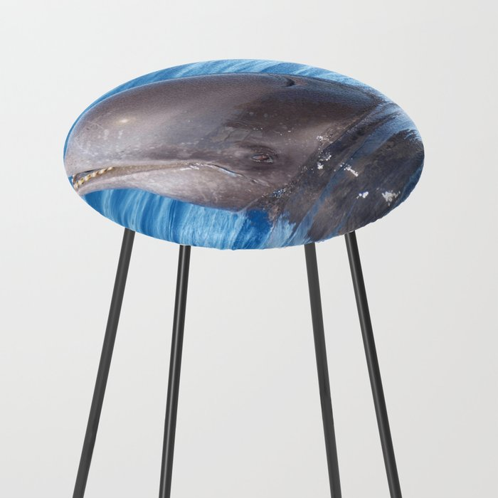 Cute Wild Pilot Whale Baby Counter Stool By