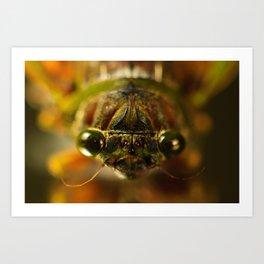 Cicada Chaos Art Print