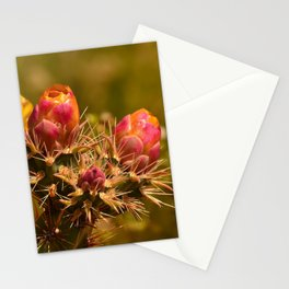Cacti in Bloom - II Stationery Cards