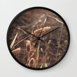 Golden Hour in the fields of Ojai California Wall Clock