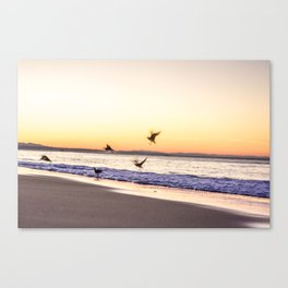 Scatter Birds Canvas Print