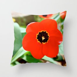 Red Portal Throw Pillow