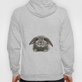 Bunny rabbit sitting Hoody
