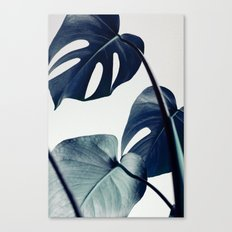 botanical vibes II Canvas Print