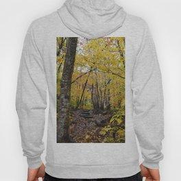 Woods 3 Hoody