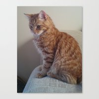 sofa Canvas Prints featuring sofa kitty by NIKED4you
