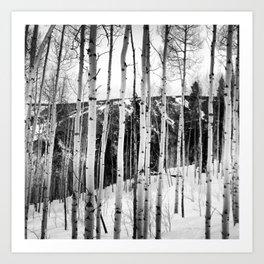 Aspen See Art Print