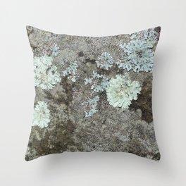 Lichen on granite Throw Pillow