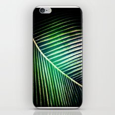 Green Collection iPhone & iPod Skin