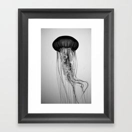 Jellyfish Black and White Framed Art Print