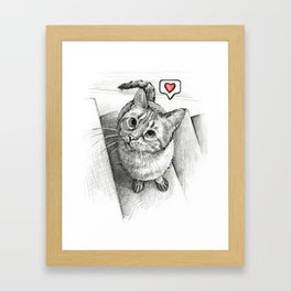 Cute Kitty Cat - Love Me Framed Art Print