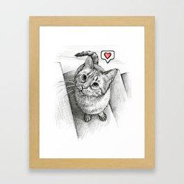 Cute Kitty Cat - Love Me Framed Art Print