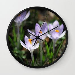 Crocus Wall Clock