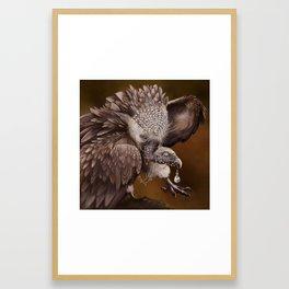 Necrophagy: Himilayan Vulture Framed Art Print