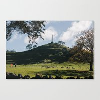 one tree hill Canvas Prints featuring One Tree Hill in Auckland by Diana Eastman