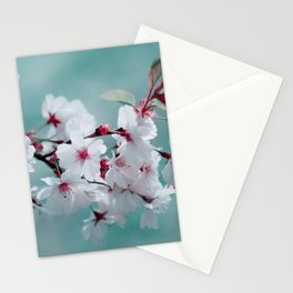 Spring 150 Stationery Cards