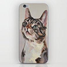 Kitten / Cat iPhone & iPod Skin