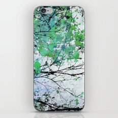 Autumn 5 Green iPhone & iPod Skin