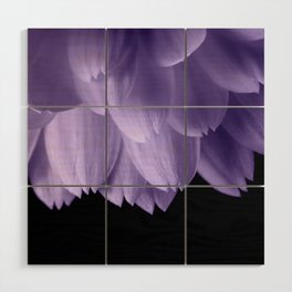 Ultra violet purple flower petals black Wood Wall Art
