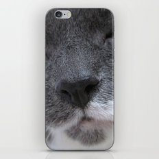 Cutest Kitty-cat ever! iPhone & iPod Skin